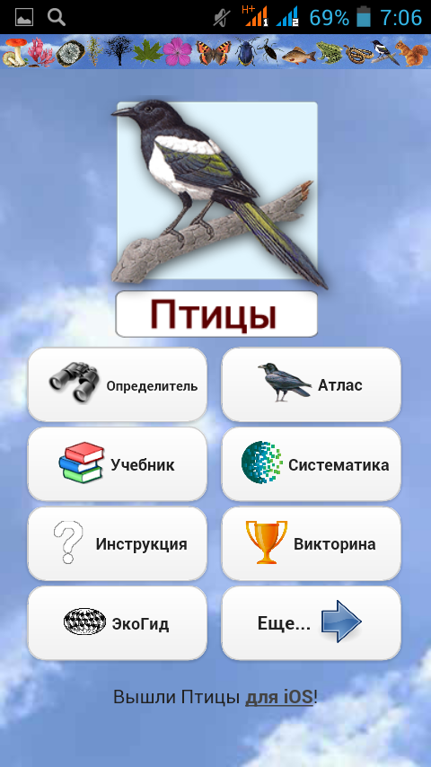 Экогид Определитель птиц