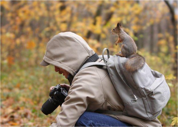 где снимать животных