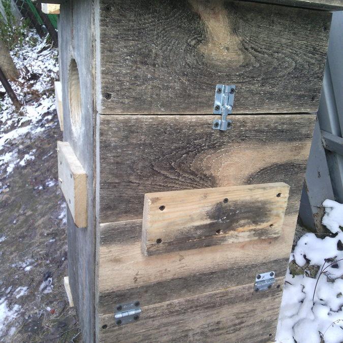 дверца гнездового ящика
