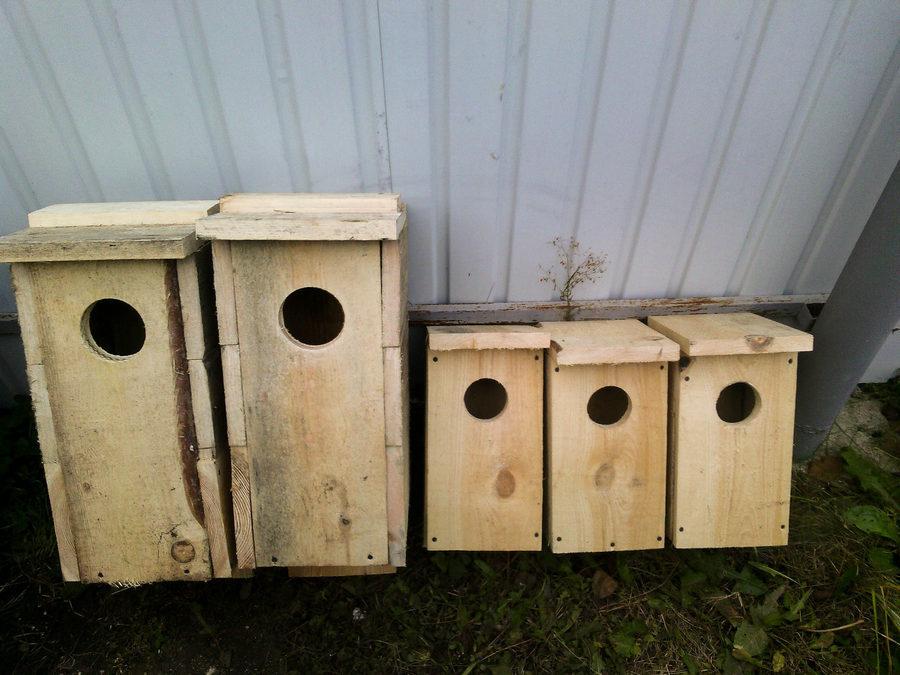 гнездовья для совиных