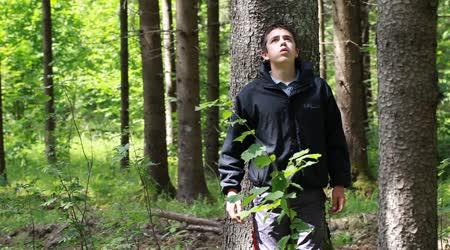заплутал в лесу