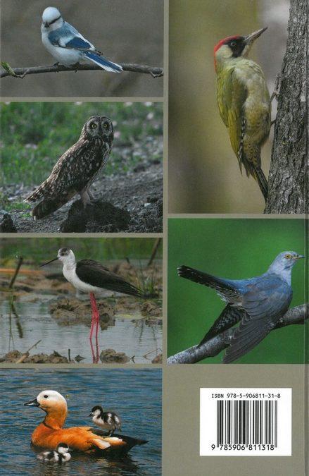 фотографии птиц Московской области