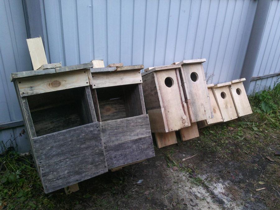 гнездовья для сов