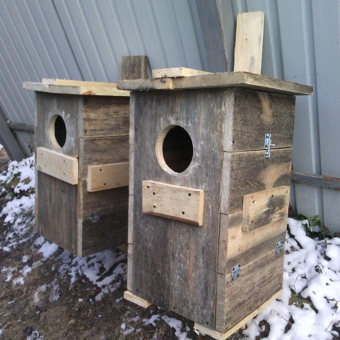 гнездовые ящики для неясыти